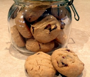 Oats & Cranberry Vino Cotto Biscuits